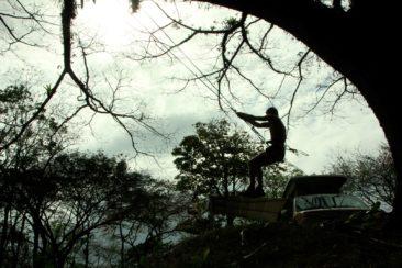 swingtag2