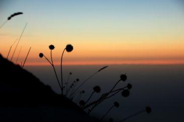 Sunrise on 1550m